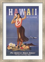 Framed Hawaii by Clipper