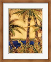 Framed Bahama Splendor I