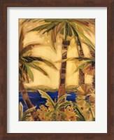 Framed Bahama Splendor I