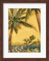 Framed Bahama Splendor II