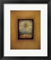 Framed Palma di Terra I