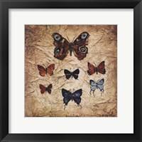 Framed Papillons II