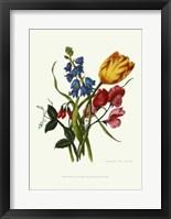 Framed Bouquet with Tulipa Gesneriana