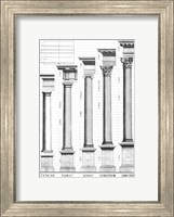 Framed Five Orders of Architecture
