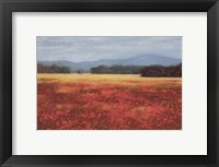 Framed French Poppy Fields