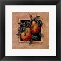 Pear Square Framed Print