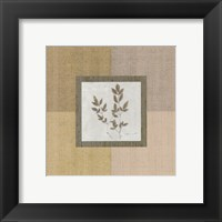 Framed Botanical Square ll