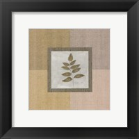 Leaf Element ll Framed Print