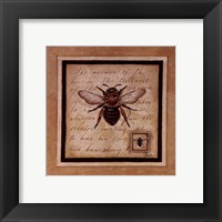Framed Worker Bee