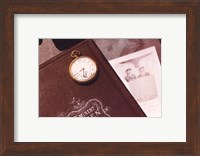 Framed Time Flies