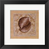 Sea Treasures I Framed Print