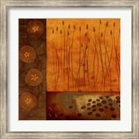 Framed Sienna Sealife II