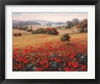 Framed Italian Poppy Vista II