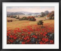 Framed Italian Poppy Vista II