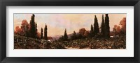 Autumn Vineyard #1 Framed Print