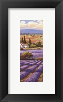 Framed Fields Of Lavender II