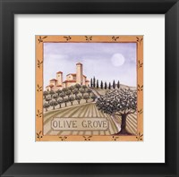 Framed Olive Grove IV
