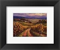 Framed Vineyard Hill I