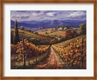 Framed Vineyard Hill II