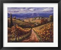 Framed Vineyard Hill II