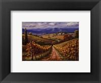 Vineyard Hill II Framed Print