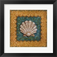 Sanibel Scallop Framed Print