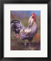 Framed Purple Rooster