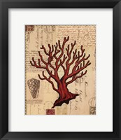 Red Coral I Framed Print