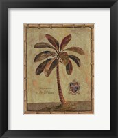 Framed Caribbean Palm IV With Bamboo Border