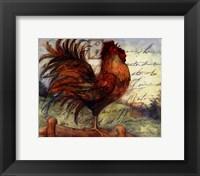 Framed Le Rooster I