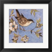 Framed Native Finch I