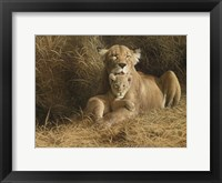 Framed Mother's Pride