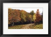 Framed Autumn Lane