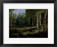 Framed Aspen Meadow
