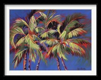 Framed 5 Crazy Palms