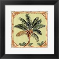 Framed Coconut Palm