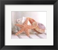 Framed Cali Starfish II