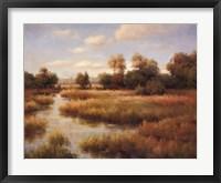 Southern Bayou Framed Print