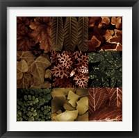 Framed Leaf Montage