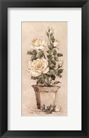 Shades Of Roses ll Framed Print