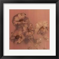 Framed Ghost Flowers I