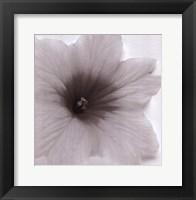 Framed Blossom [Three]