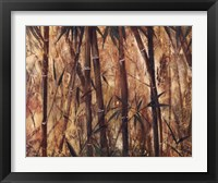 Bamboo Forest II Framed Print