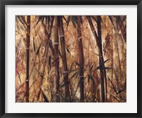 Framed Bamboo Forest II
