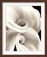 Framed Fleur No. 1