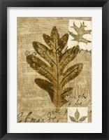 Framed Leaf Collage I