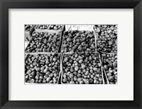 Framed Farmer's Market VI
