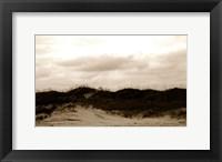 Framed Ocracoke Dune Study I