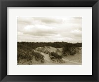 Framed Ocracoke Dune Study II