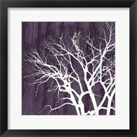 Aurora Silhouette I Framed Print